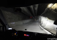 There are over 15 km of tunnels.