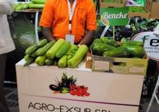 Guillermo de Agro-Exsur de Vegetables Orientales.